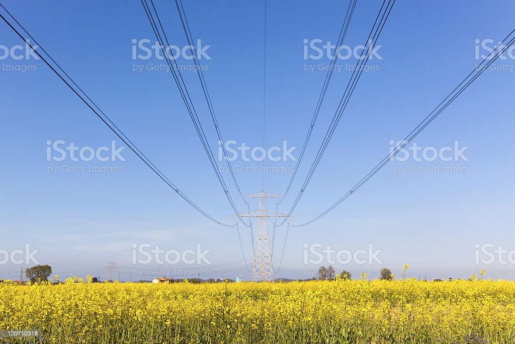 Electricity Pylon in the Countryside on Spring royalty-free stock photo