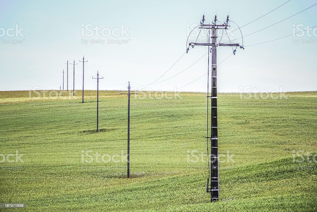 Electricity Pylons In A Wheat Field royalty-free stock photo