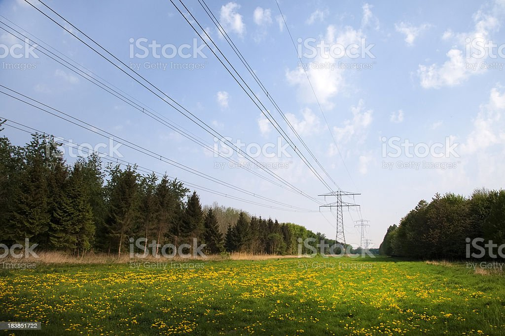 Electricity transmisison lines over a green field royalty-free stock photo