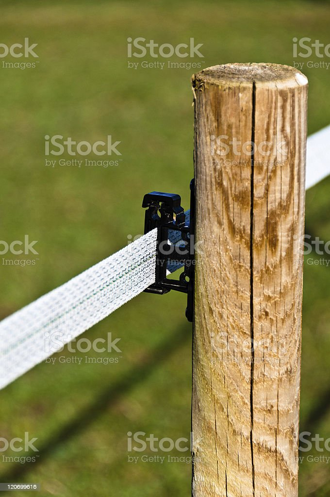 Electrified Fence For Livestock stock photo