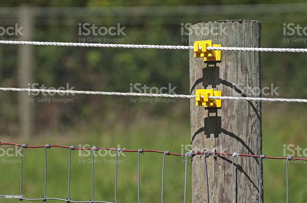 Electrified wires on pasture fence stock photo