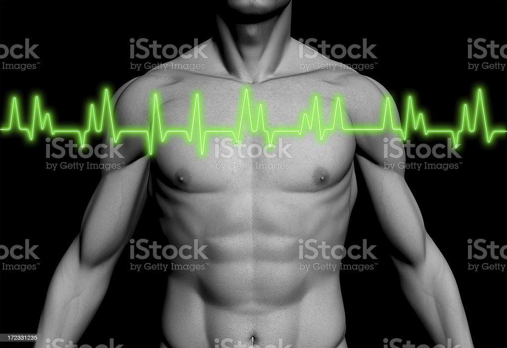 Electrocardiogram (ECG / EKG) with human body royalty-free stock photo