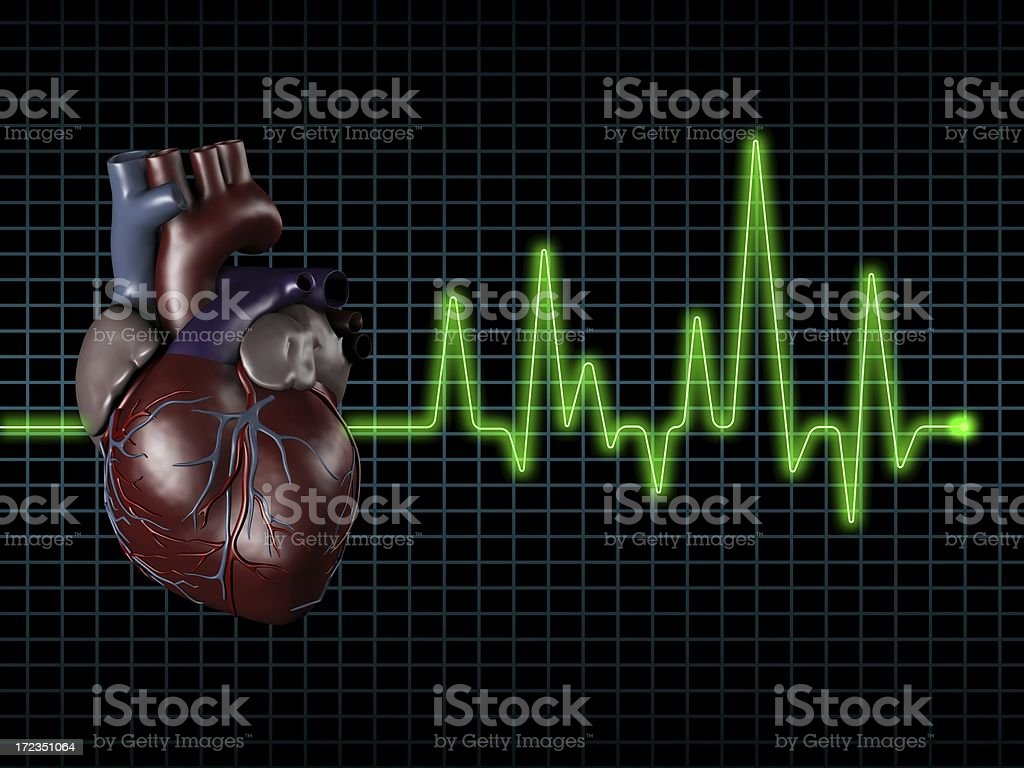 Electrocardiogram (ECG / EKG) with human heart on screen stock photo