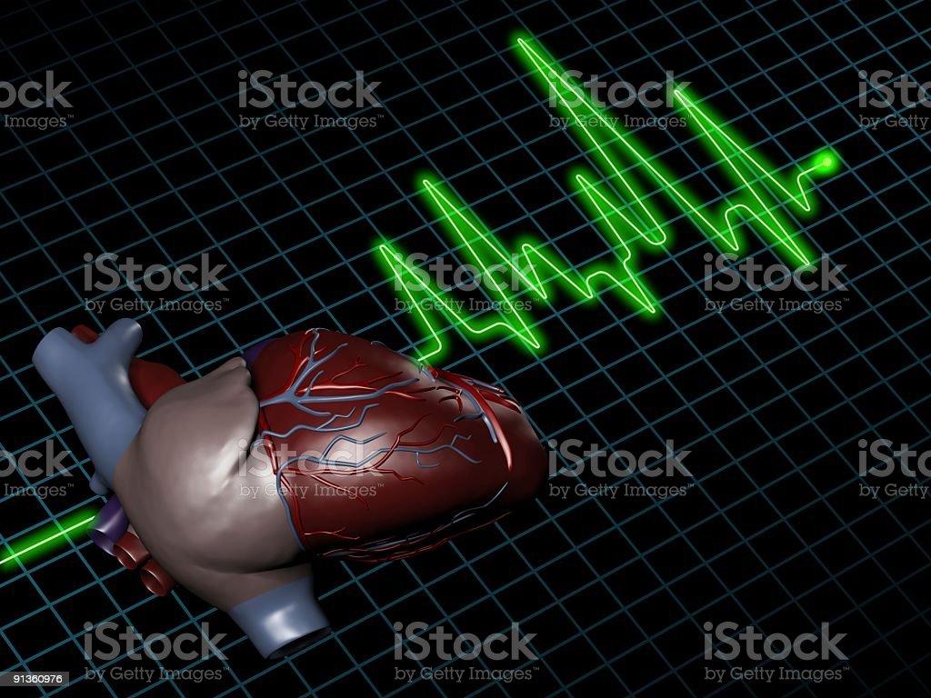 Electrocardiogram (ECG / EKG) with human heart on screen royalty-free stock photo
