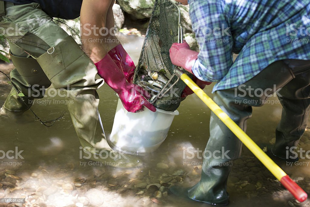 electrofishing royalty-free stock photo