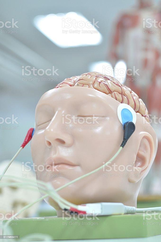 electromyography stock photo