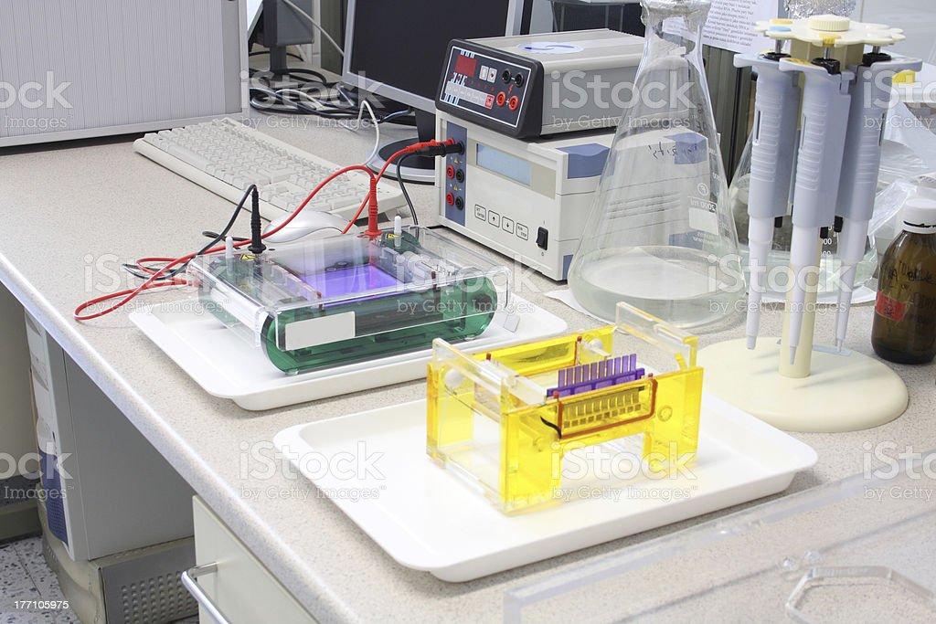 Electrophoresis stock photo