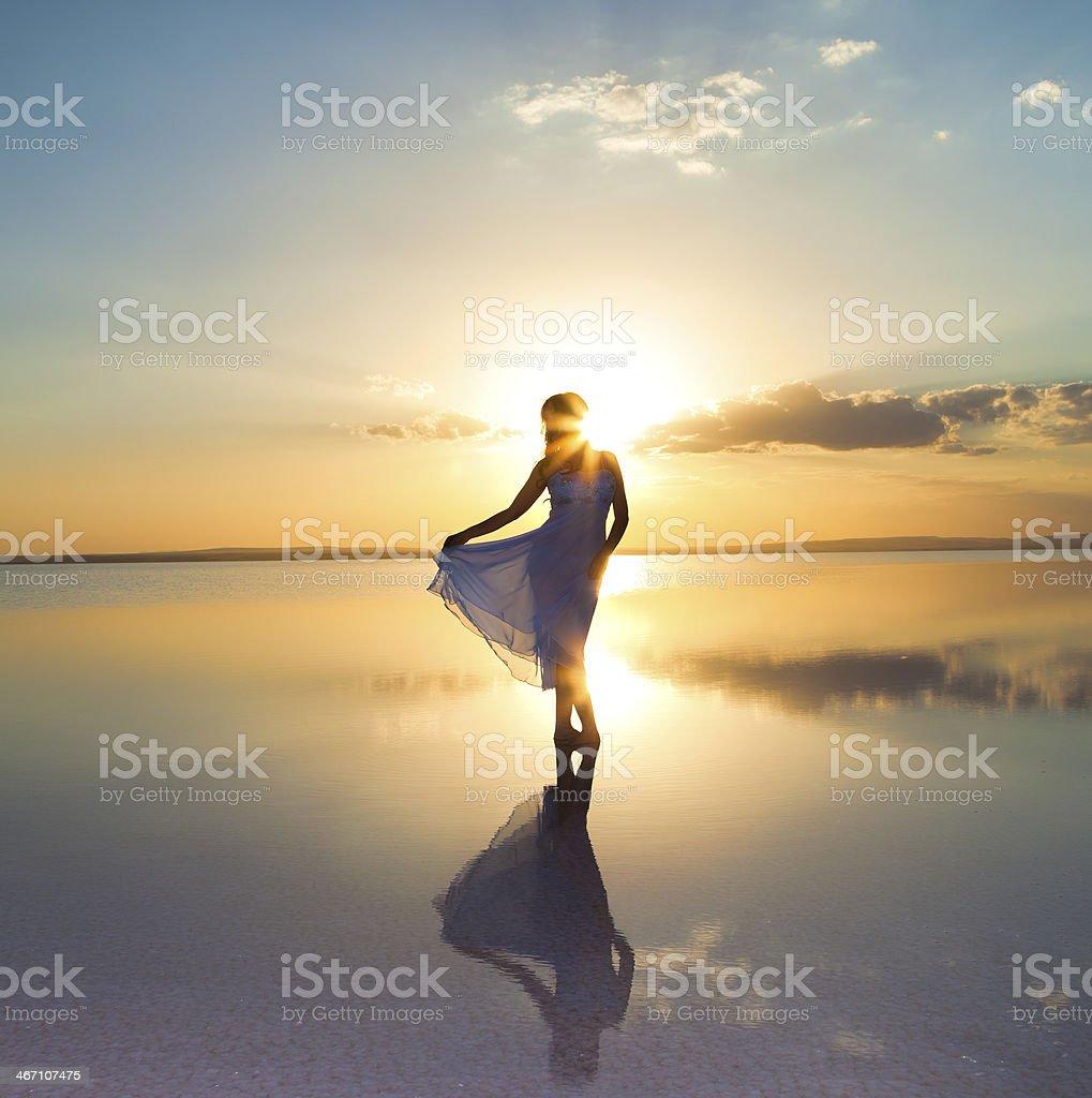 Elegance at sunset stock photo