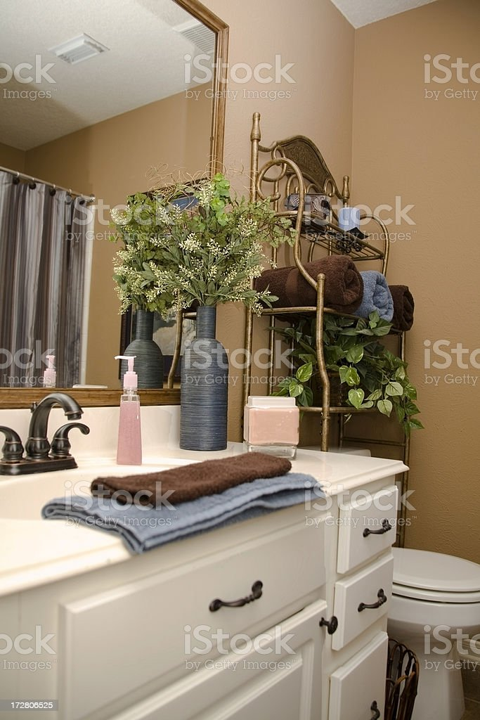 Elegant Bathroom royalty-free stock photo