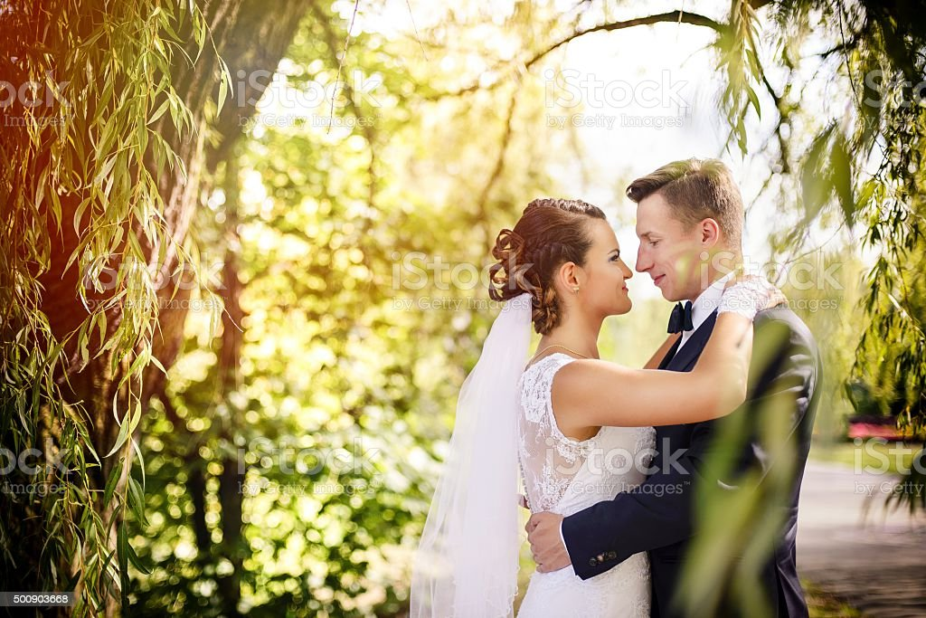 Elegant bride and groom posing together  wedding day stock photo