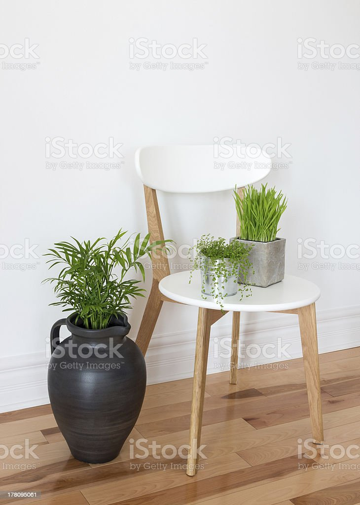 Elegant chair with green plants stock photo