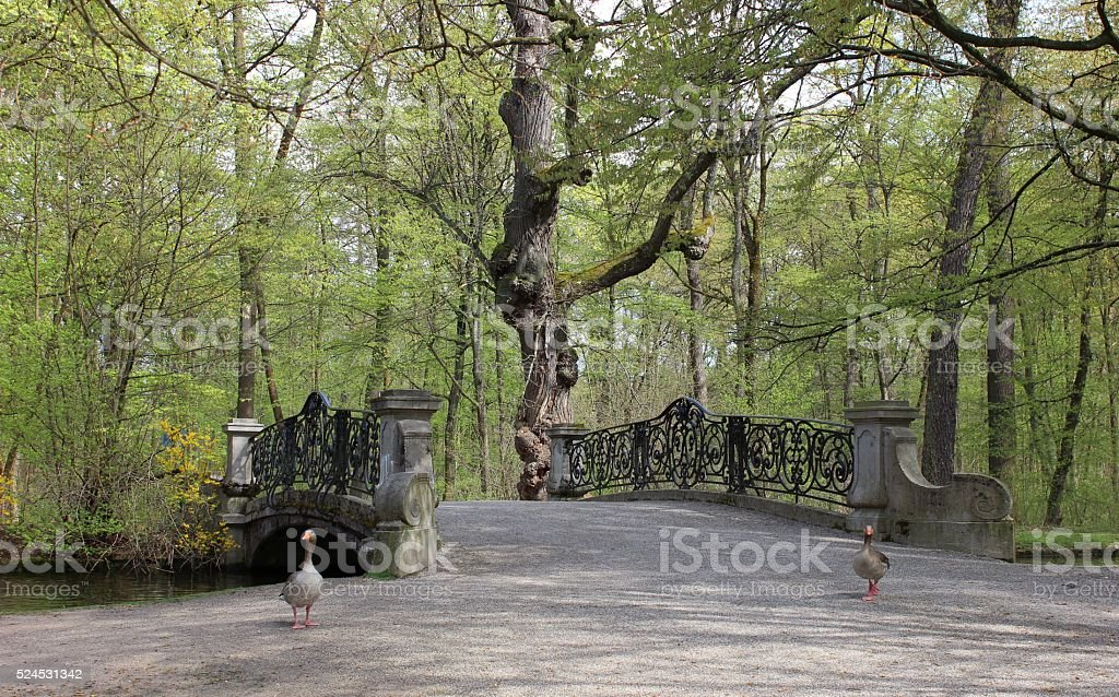 Elegant classical bridge in the park with two gooses stock photo