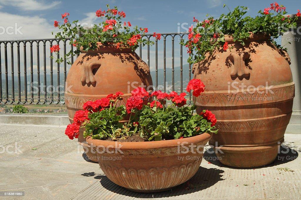 elegant garden planters with red pelargonium flowers stock photo