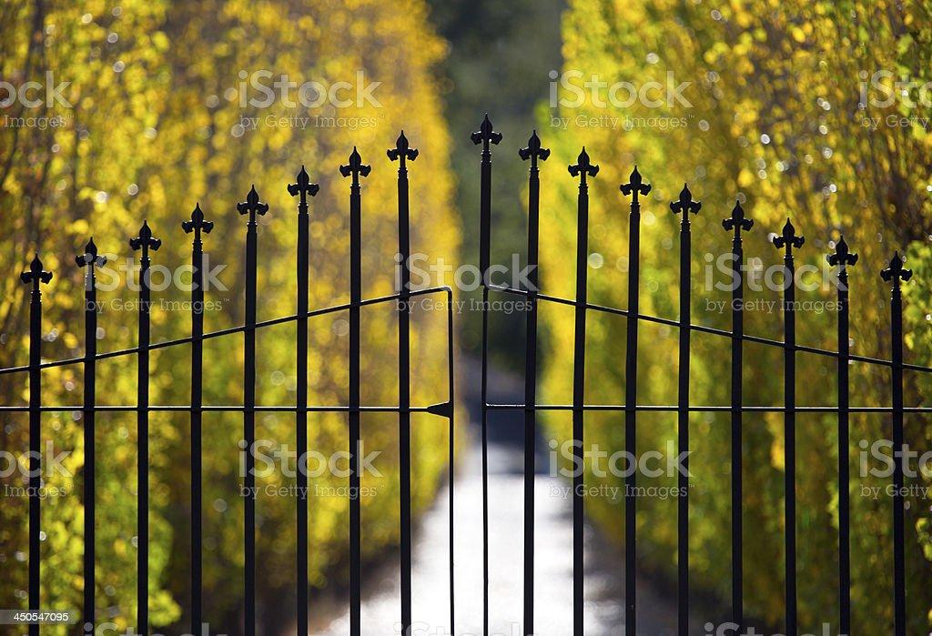 Elegant Gate stock photo