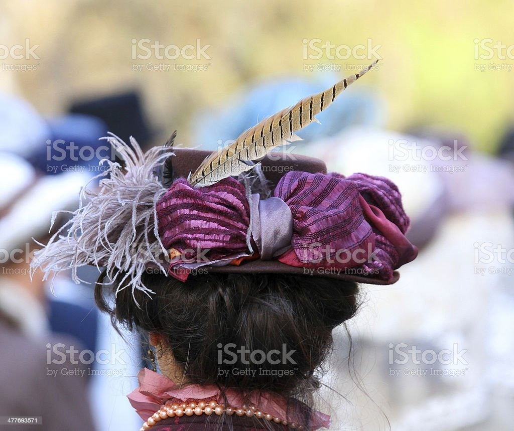 elegant lady hat adorned with a feather of a pheasant stock photo