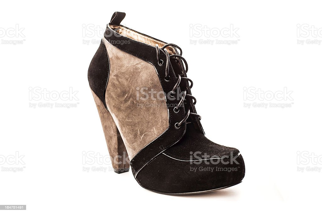 Elegant Woman's Shoe royalty-free stock photo