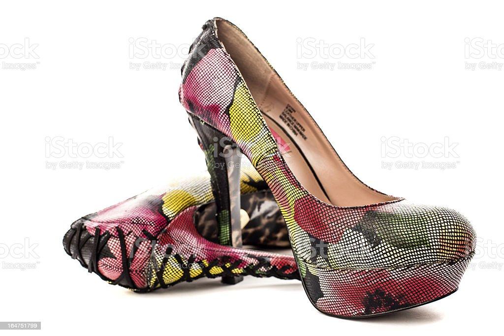 Elegant Woman's Shoe royalty-free stock photo