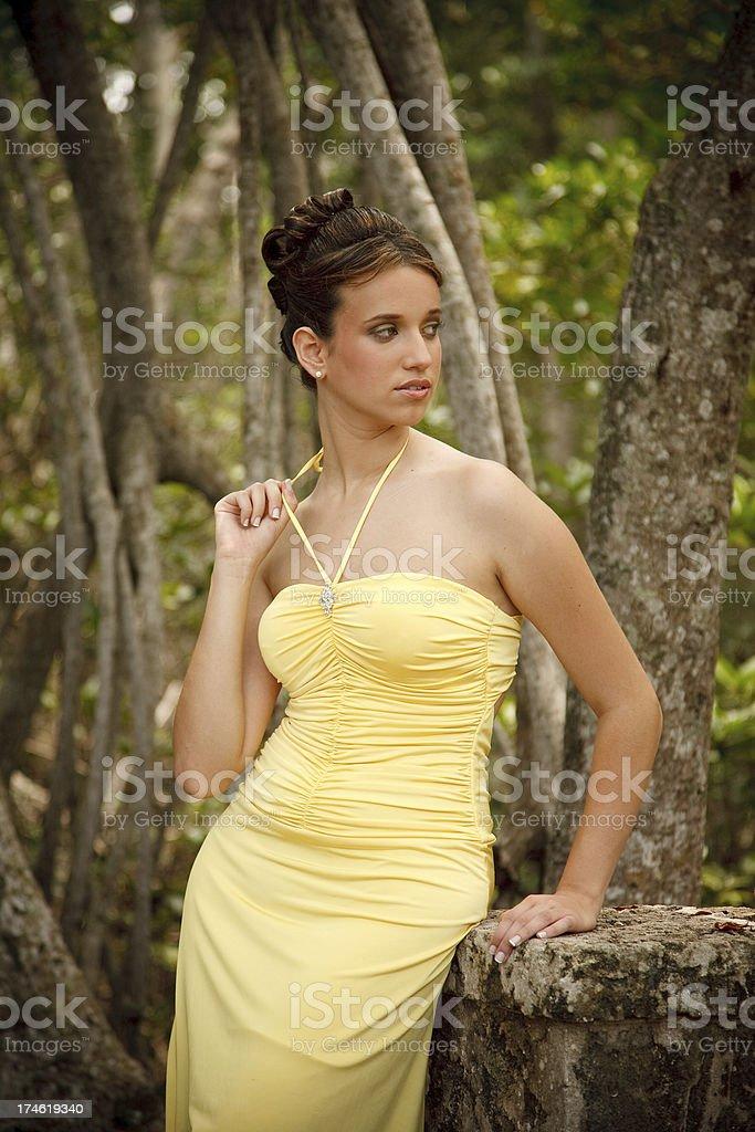 elegant young girl stock photo