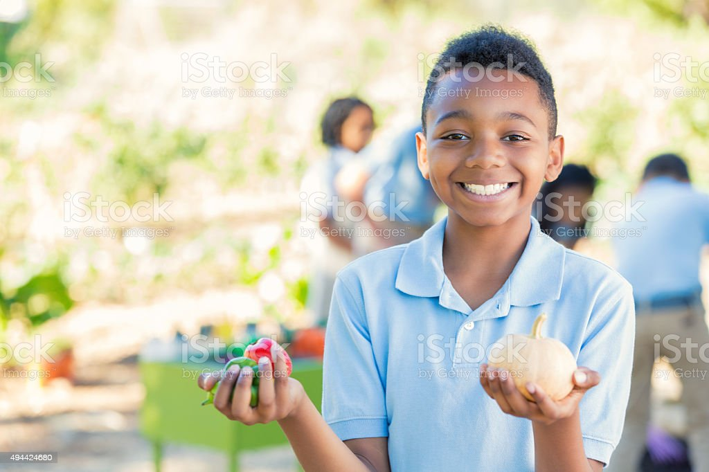 Elementary age boy holding vegetables in school garden stock photo