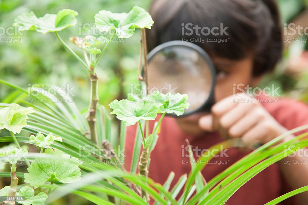 Elementary age girl enjoys discovering nature. Magnifying glass. stock photo