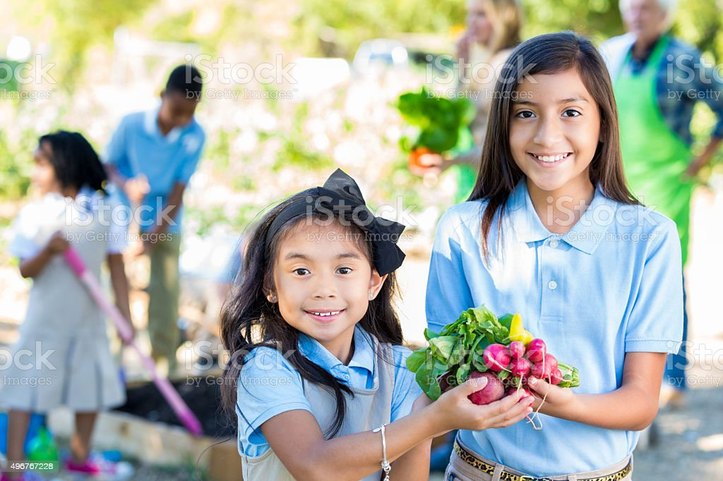 Elementary girls touring garden during farm field trip stock photo