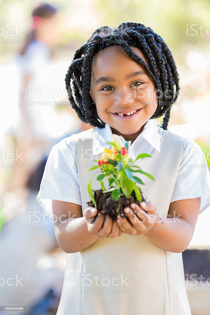 Elementary student learning about plant life in school garden stock photo