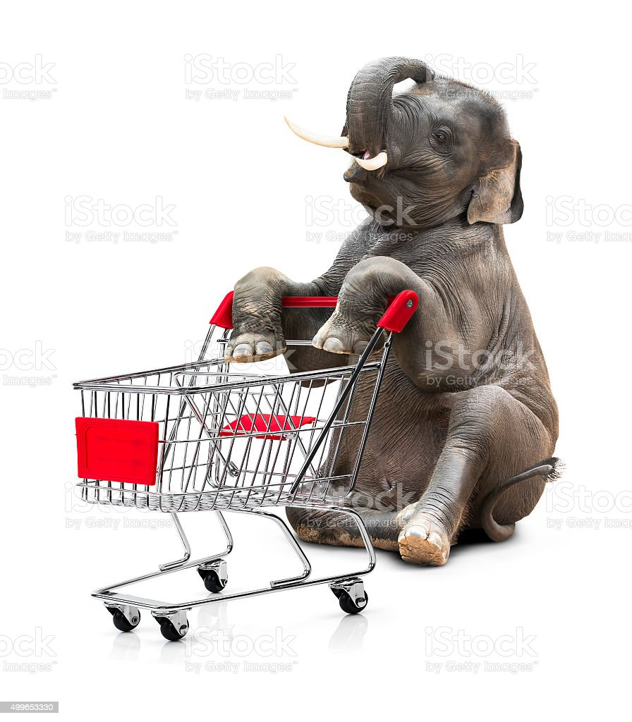 Elephant and shopping cart stock photo