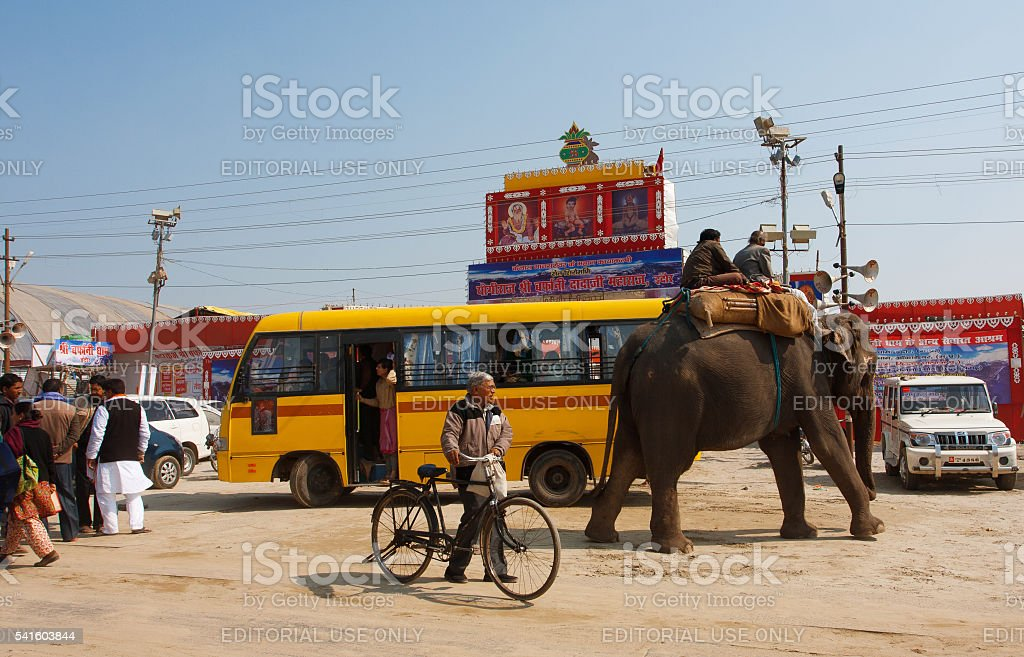 Elephant and the indian people on the bus stop stock photo