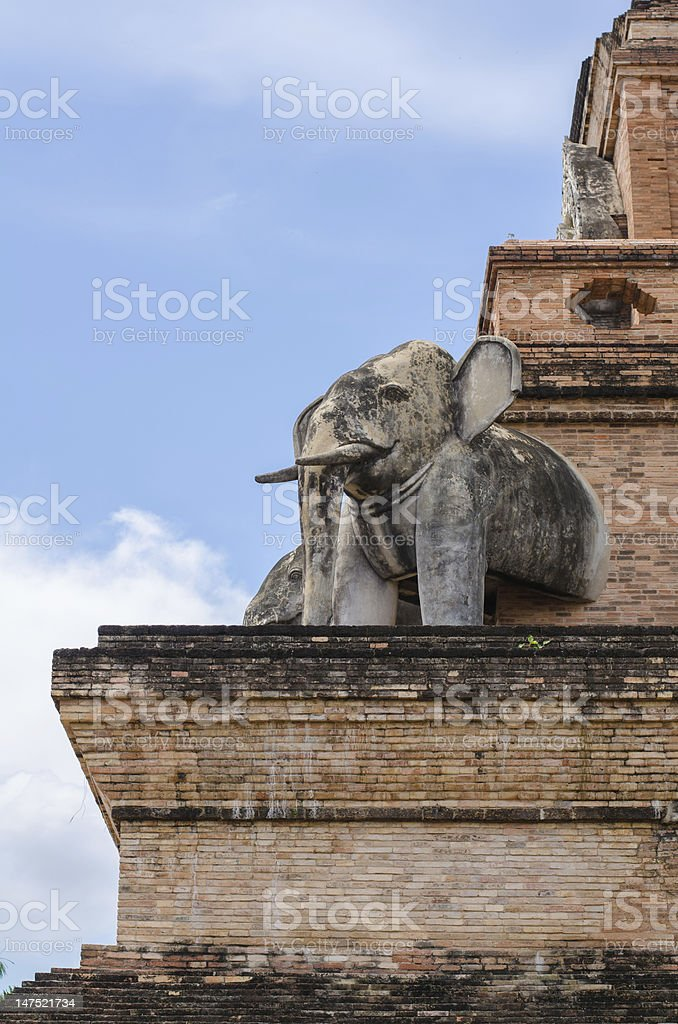 Elephant and the relics royalty-free stock photo
