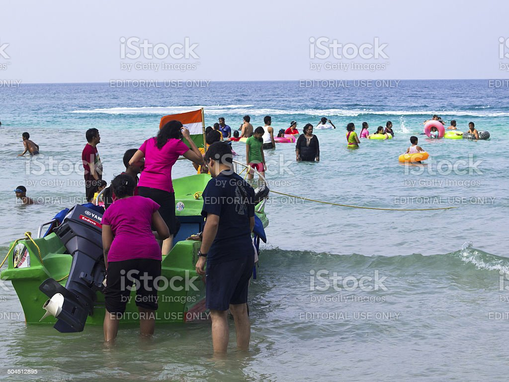 Elephant beach stock photo