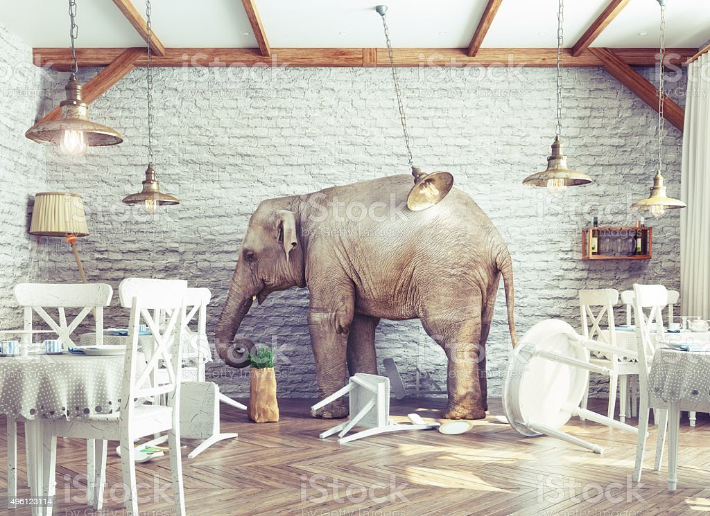 elephant calm in a restaurant interior stock photo