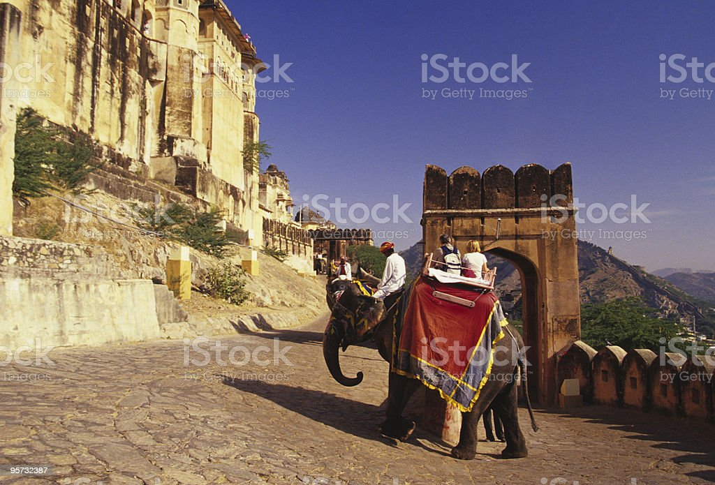 Elephant carrying people to Amber Palace stock photo