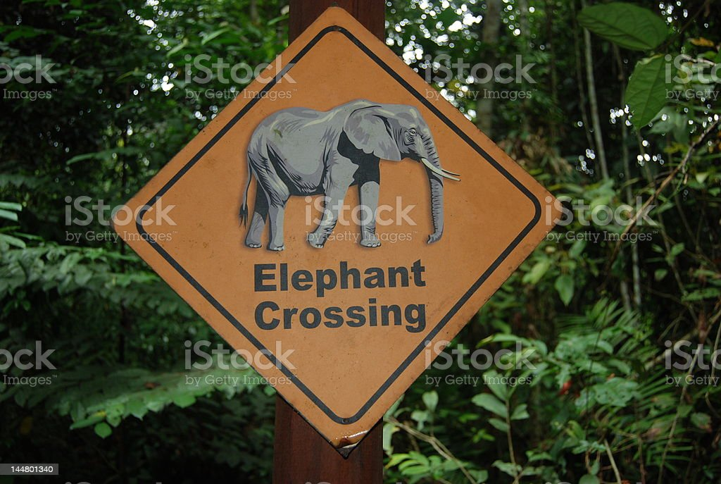 Elephant crossing sign stock photo