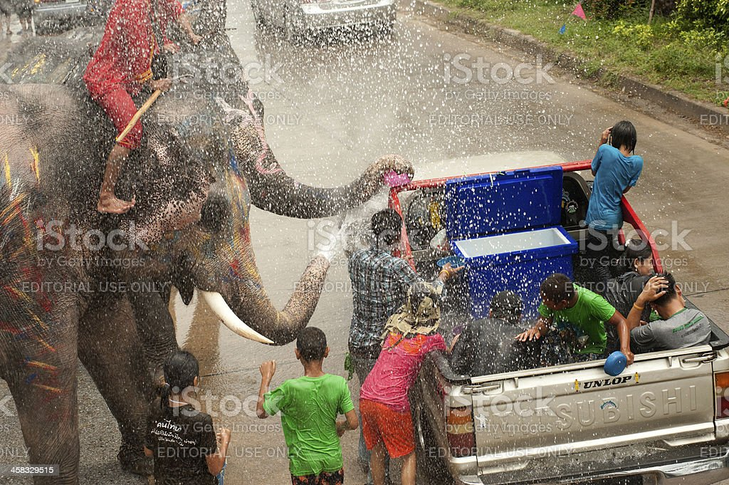 Elephant dance and play in water festival royalty-free stock photo