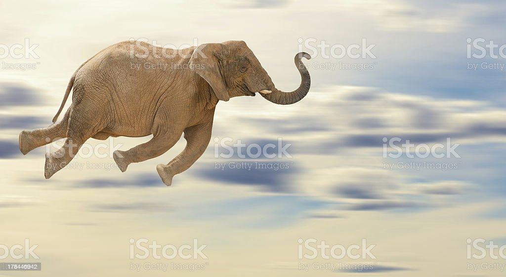 Elephant flying through a cloudy sky stock photo