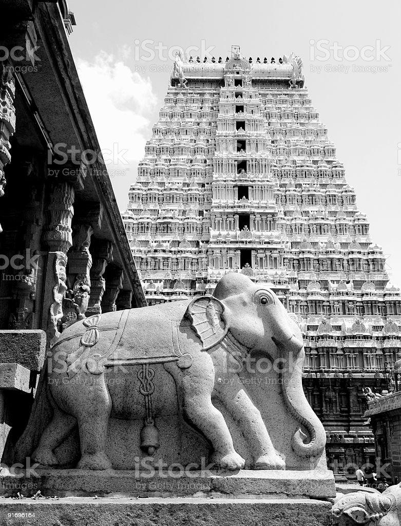 Elephant in Hindu Temple stock photo