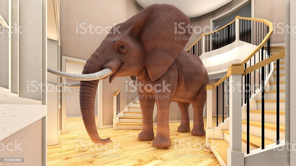 Elephant in the living room 3d rendering stock photo