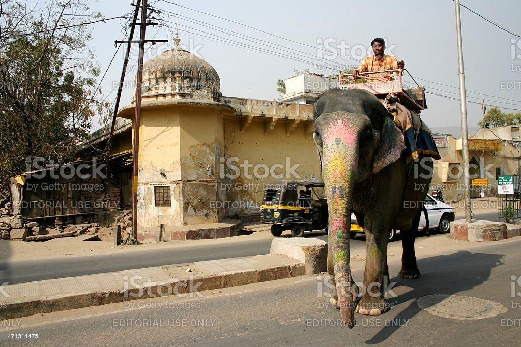 Elephant mahout royalty-free stock photo
