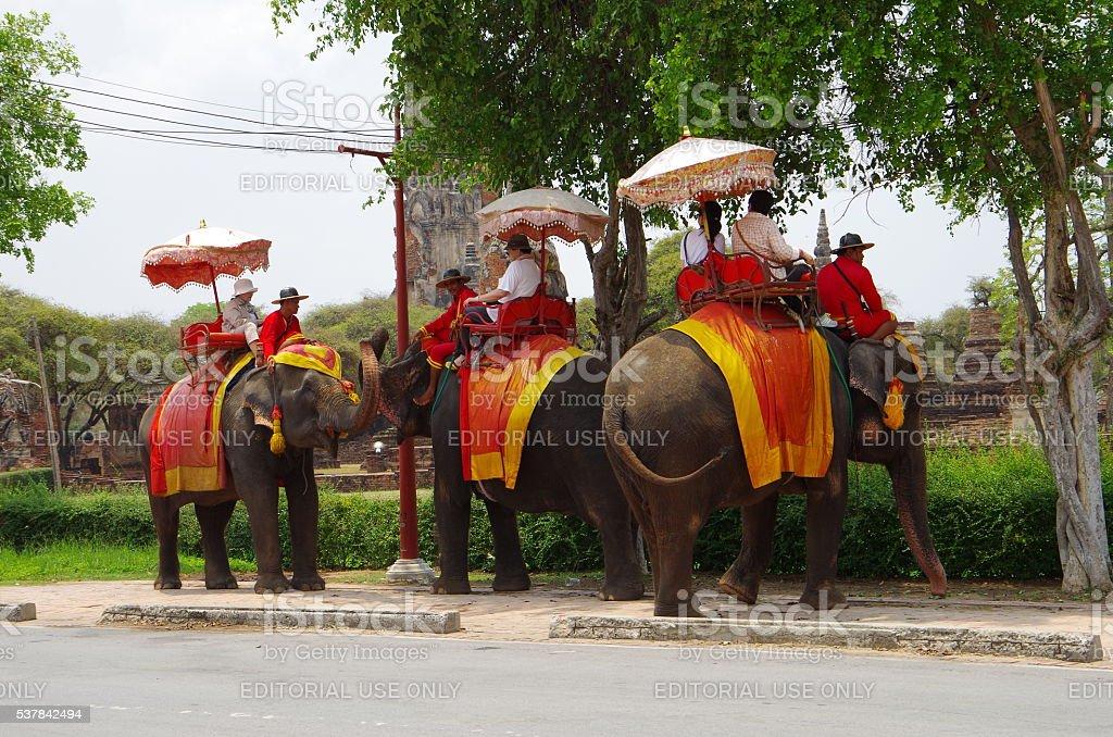 Elefante viaje, Ayuthaya foto de stock libre de derechos