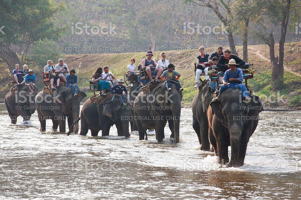Elephant ride. royalty-free stock photo
