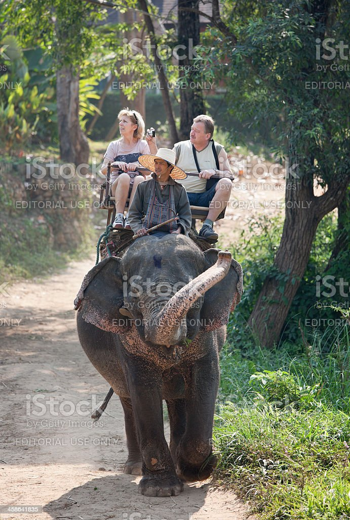 Elephant ride. stock photo