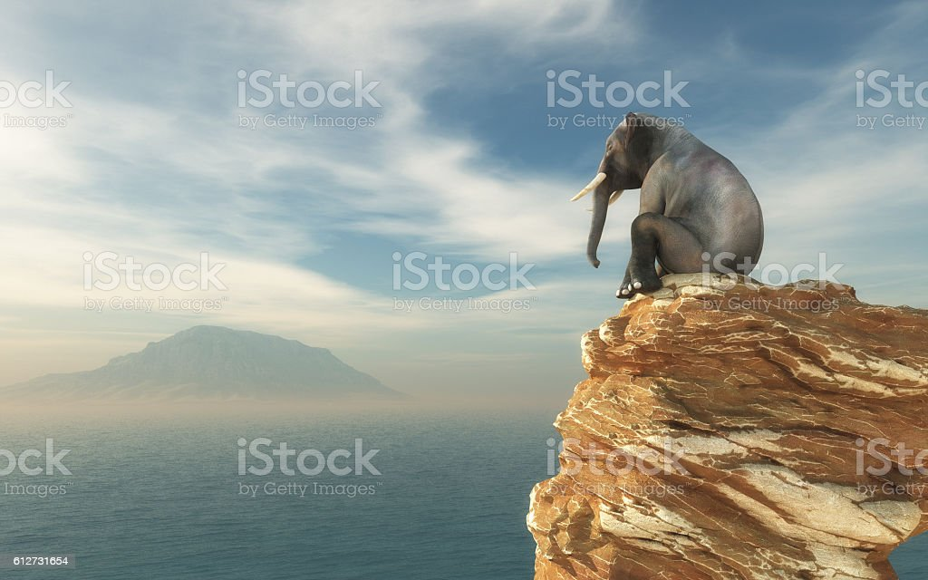 Elephant sitting on edge stock photo