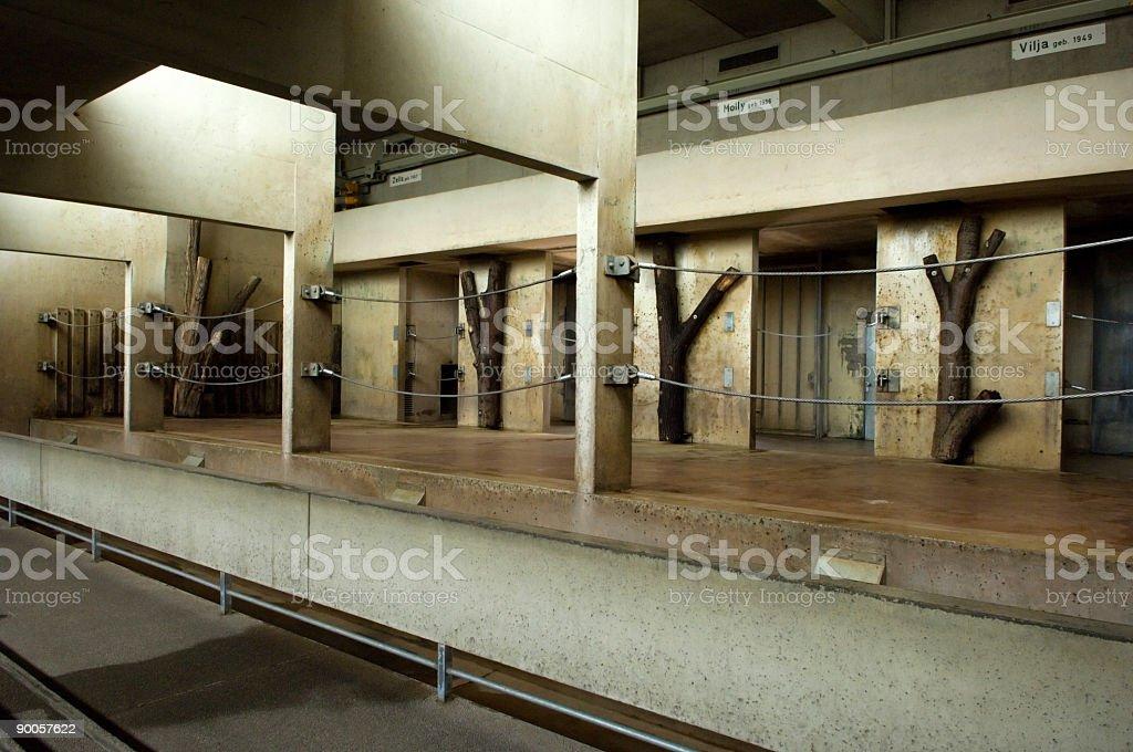 elephant stable interior stock photo