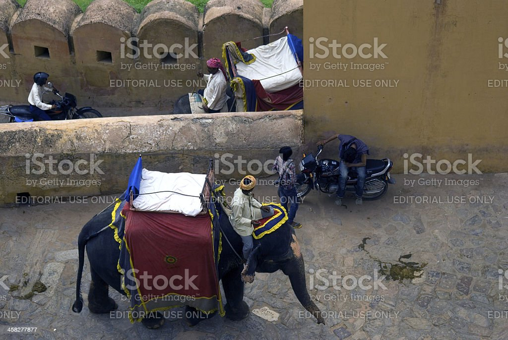 Elephant taxis, Amber, Rajasthan, India royalty-free stock photo