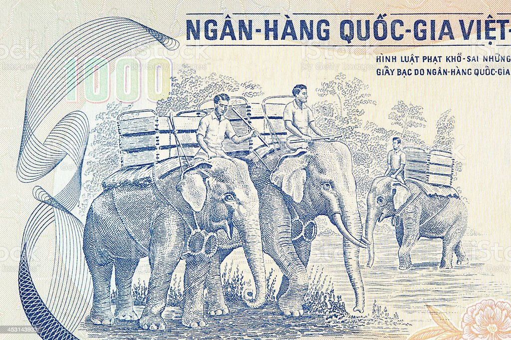 Elephants and handlers at work on Banknote stock photo