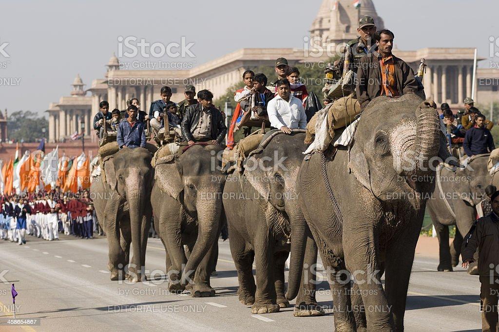 Elephants on Republic Day Parade royalty-free stock photo