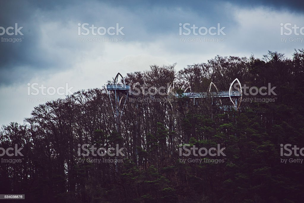elevated Bridge through forest stock photo