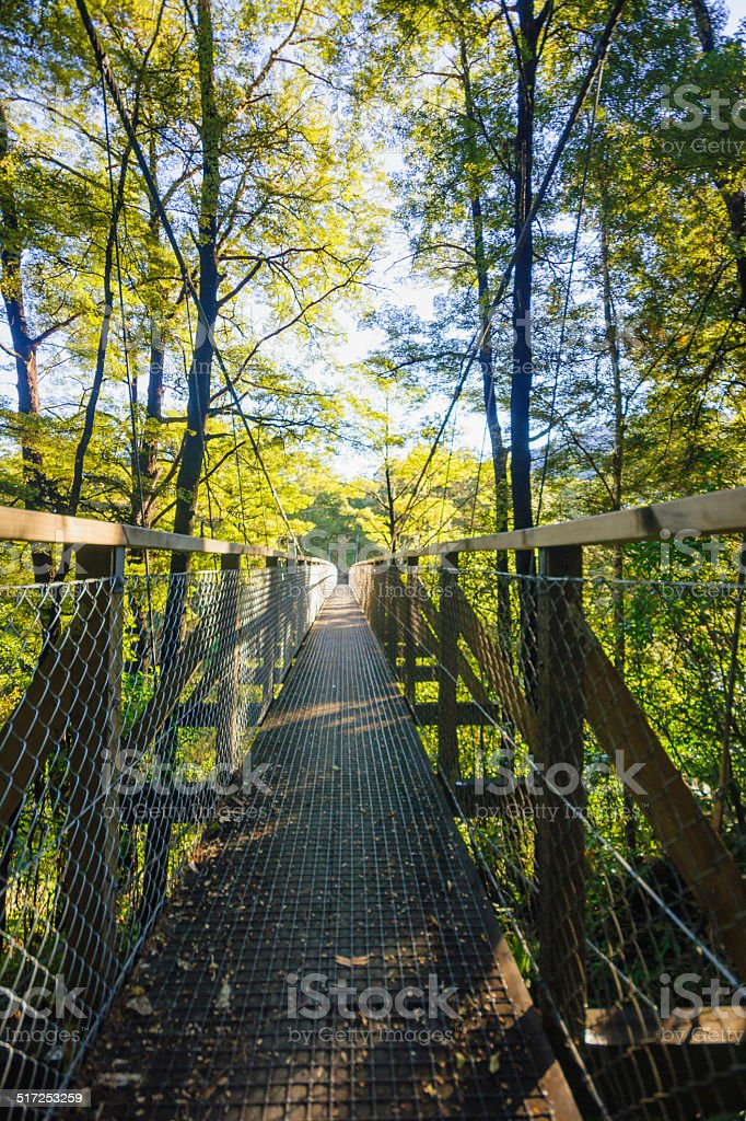 Elevated footpath stock photo