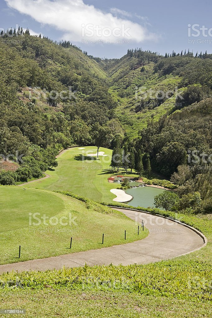 Elevated Golf Hole royalty-free stock photo