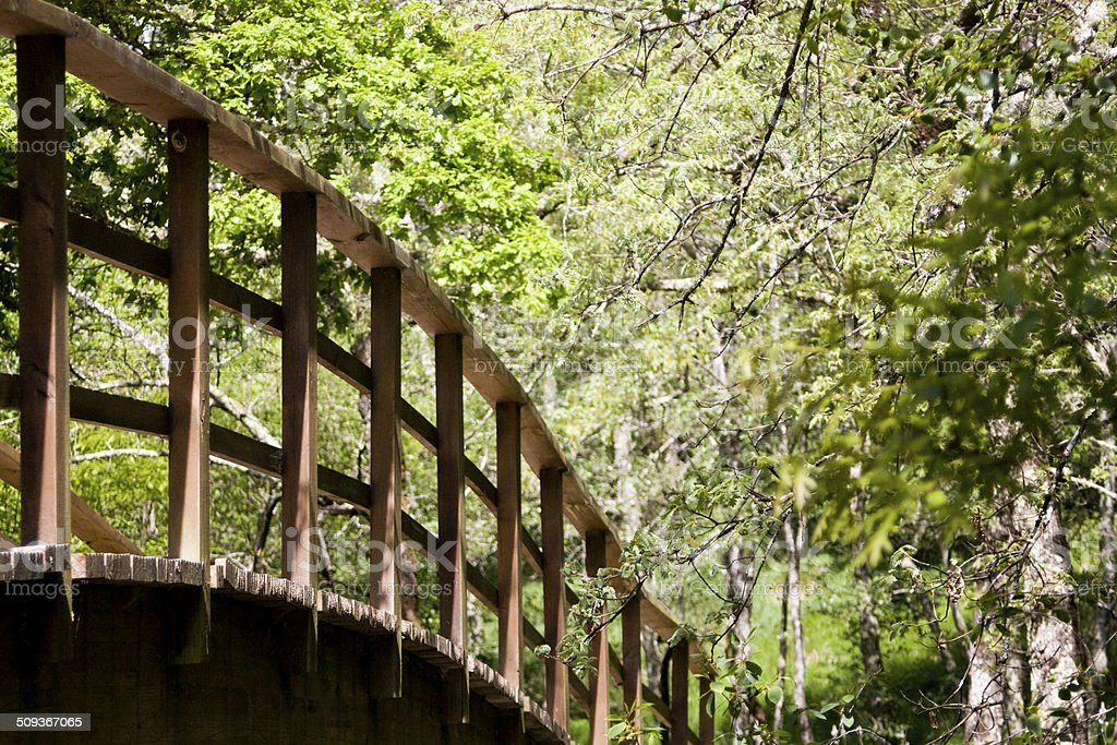 Elevated trail, wooden footbridge royalty-free stock photo